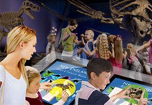 Interactive Exhibit